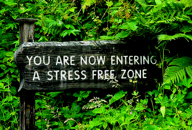 stress-free-zone