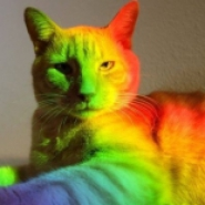 Profile picture of LisaJaxx