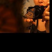 Profile picture of BaileeJane