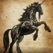 Profile picture of theunicornwhisperer
