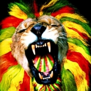 Group logo of Jah Rastafari Movement