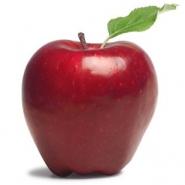 Group logo of Apples of Eden